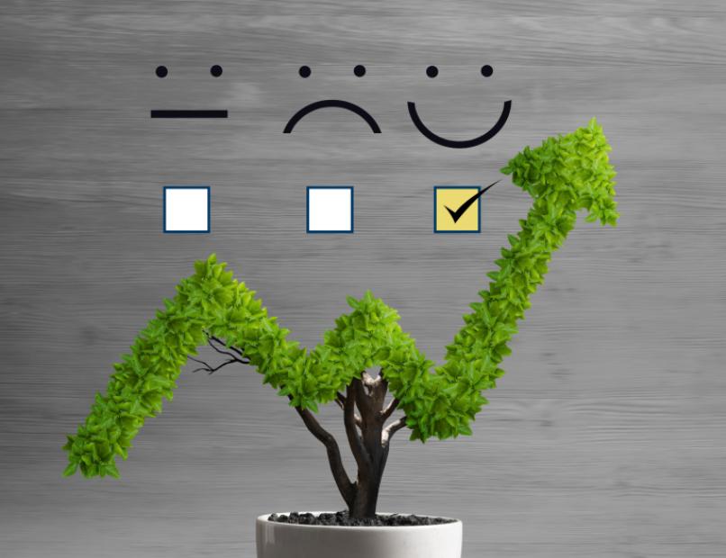 Experiencia del Cliente y Rentabilidad